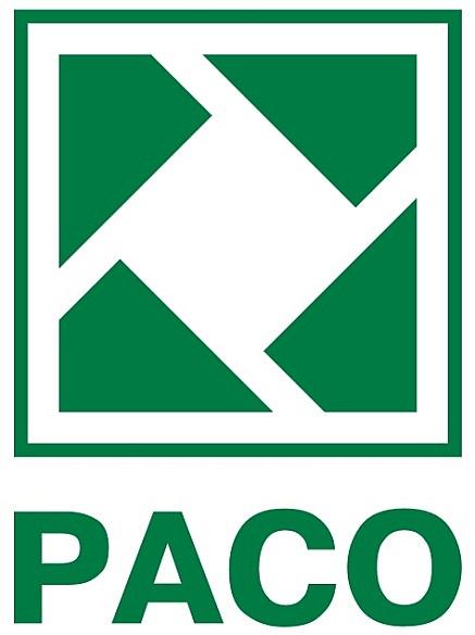 Создание РАСО (Российская ассоциация по связям с общественность)
